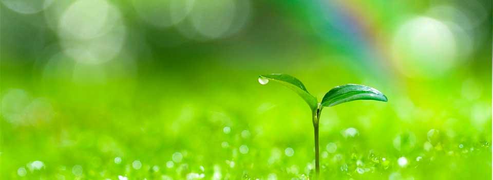 省エネ製品の提案によるコストカットを通じて企業様に貢献し、省エネにより地球環境改善に役立ち、次の世代の子供たちに誇れる未来を残していくことを願っております